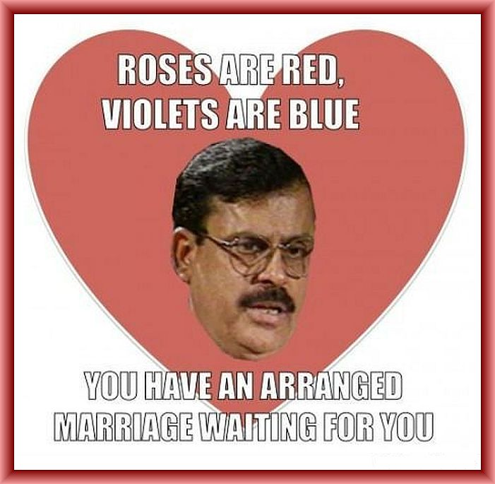 Father meme, roses,violets