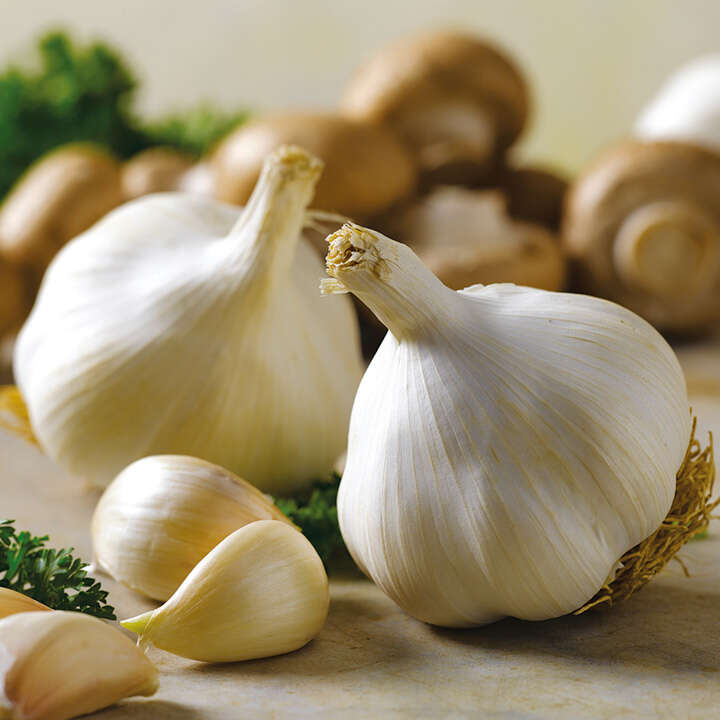 garlicbulbs-Power Food To Boost Immunity