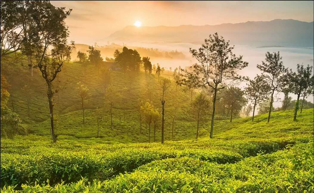 banglore ooty road trips in india