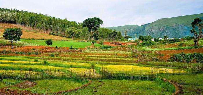 vizag araku road trips in india