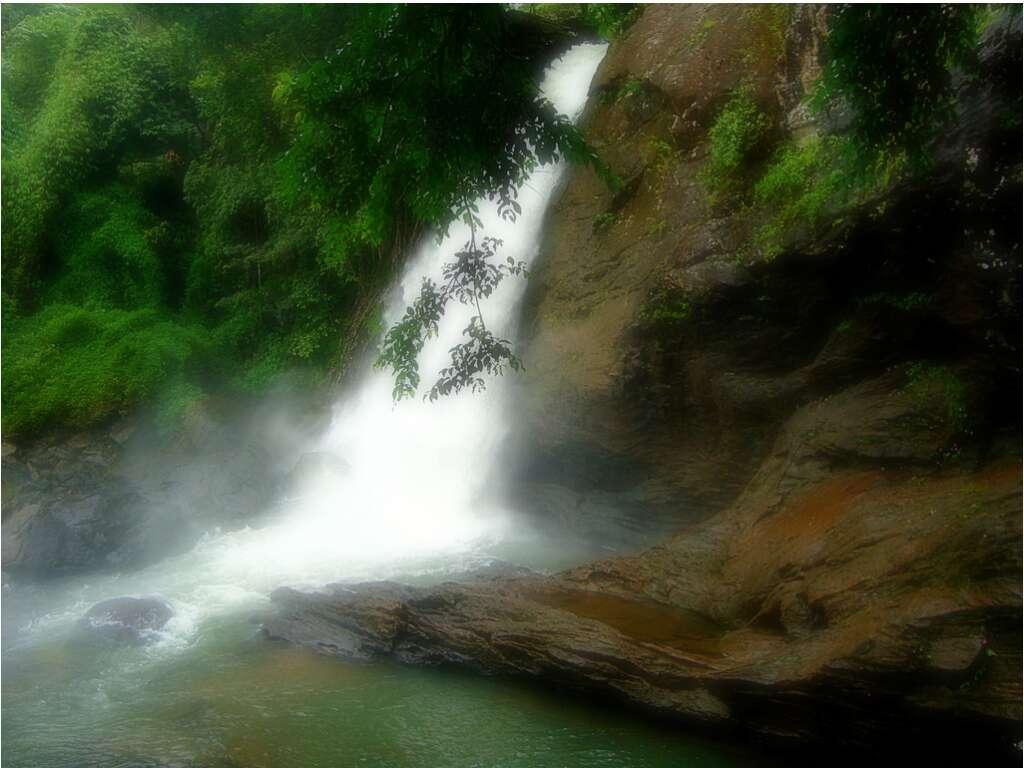 Sentinel Rock Waterfalls Kerala
