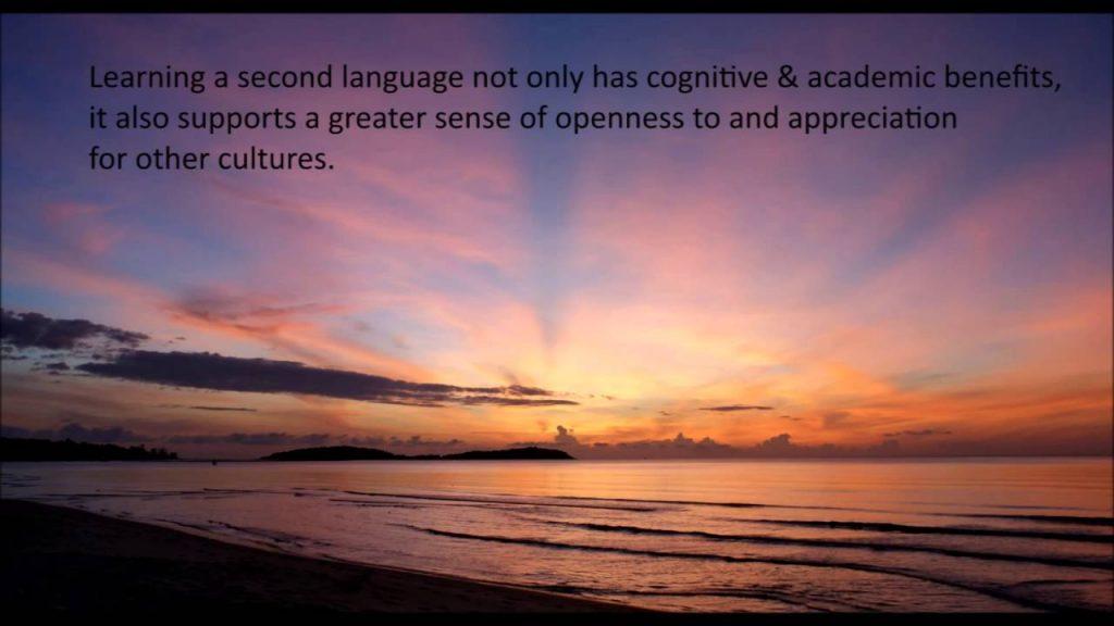 learn new language self improvement