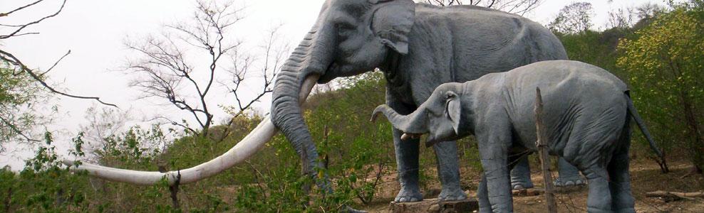 suketi fossil park nahan hill stations near Delhi