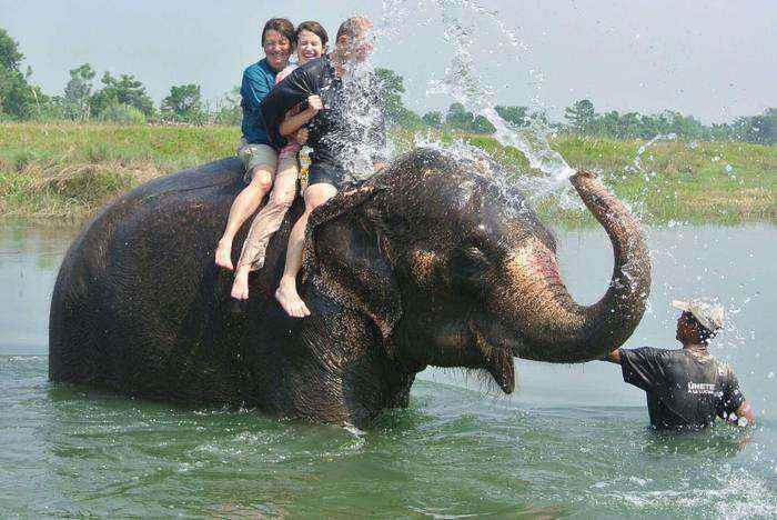 places to visit in goa elephant splash