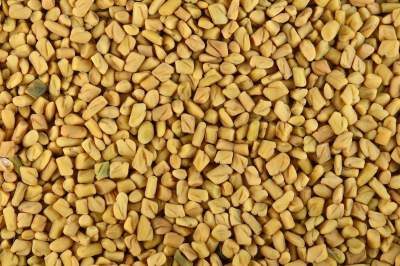 Increase-Hair-Density-Fenugreek_seeds