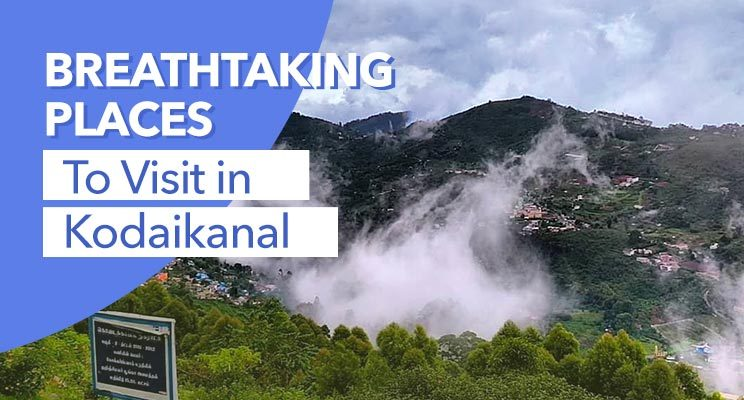 Best Places to Visit in Kodaikanal