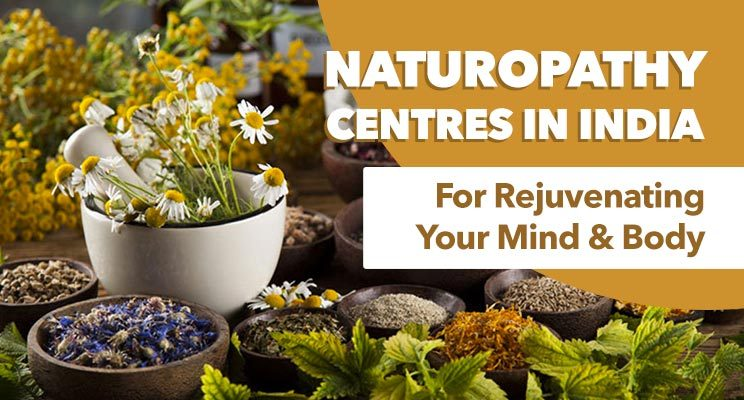 best naturopathy centres in india