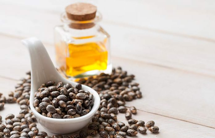 5 Best Castor Oil Brands in India for Healthy Hair and Skin