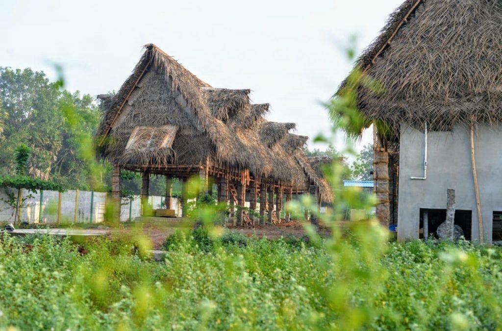 Best Backpacker hostels in India